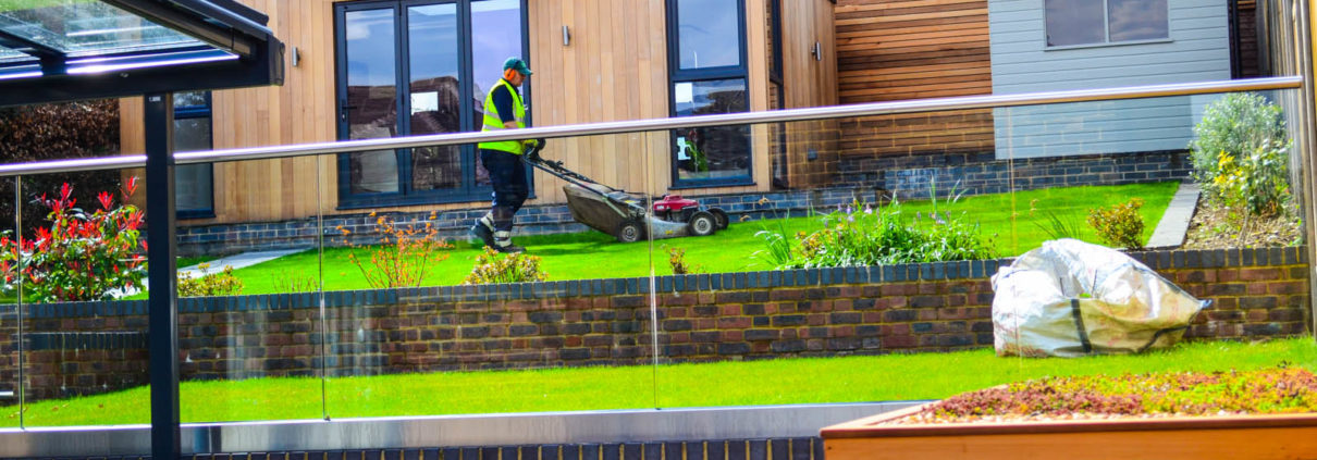 garden maintenance and cleaning services in Cheam Surrey