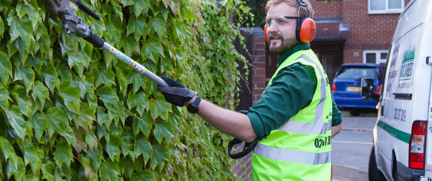 Garden maintenance services in london and surrey start at for Garden maintenance london