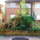 Garden Jungle Clearance Project in Bexleyheath DA7