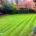 Garden maintenance project in Woldingham CR3