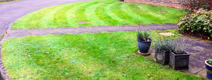 Private Block Grounds Maintenance in Caterham CR3