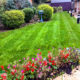Care Home Grounds Maintenance Project in Mitcham CR4