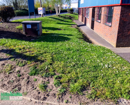 Commercial Grounds Maintenance Project in Croydon CR0