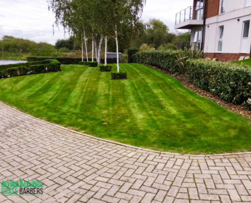 Commercial Grounds Maintenance Project in Dartford DA1