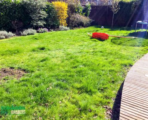 Garden Maintenance Project in Caterham CR3