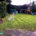 Garden Maintenance Project in Purley CR8