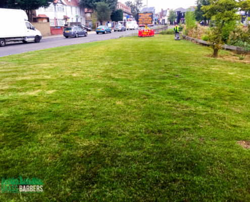 Grass Cutting Project in Mitcham CR4