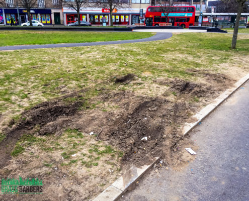 Lawn Care and Repair Project in Mitcham CR4