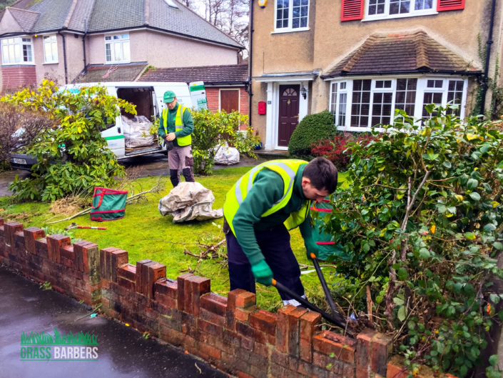 Garden Clearance Project in Shirley CR0