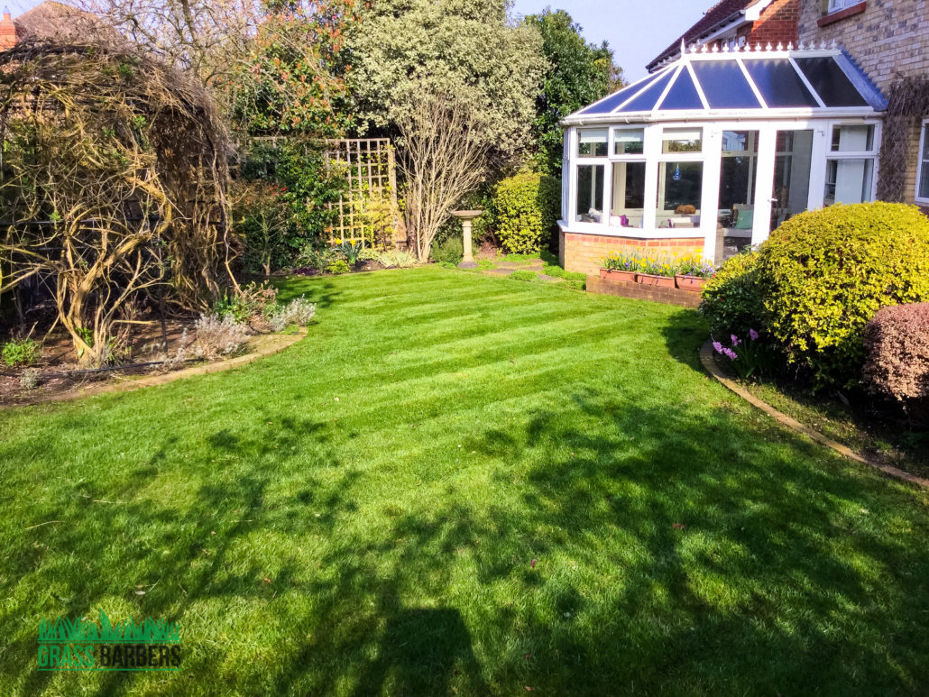 Garden maintenance project in epsom and ewell kt17 for Winter garden maintenance