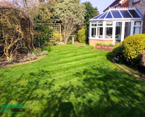 Garden Maintenance Project in Epsom and Ewell KT17