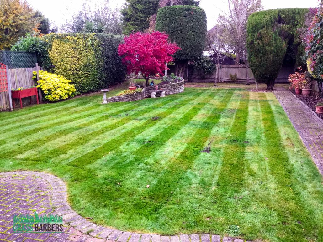 Garden maintenance project in ewell sm2 surrey for Local garden maintenance