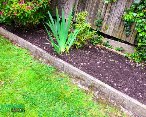 Garden Maintenance Project in Shirley CR0