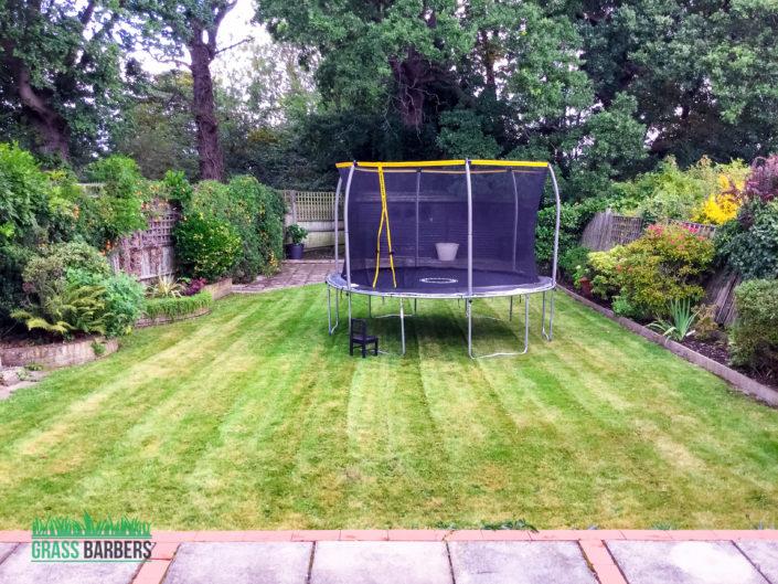 Garden Maintenance Project in Shirley CR0