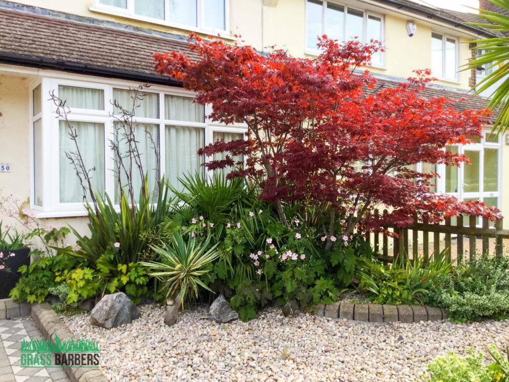 Garden maintenance project in south croydon cr2 for Garden maintenance