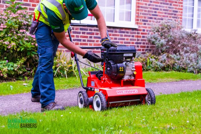 Garden Maintenance Project in Tooting Bec SW17