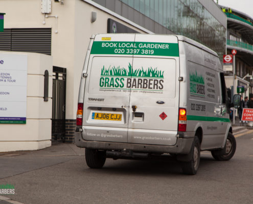 Gardening Service in Wimbledon by Grass Barbers