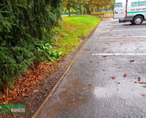 Commercial Grounds Maintenance Project in Richmond TW10