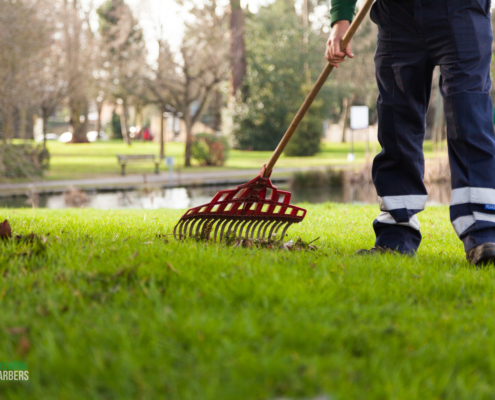 Gardening services in Sanderstead CR2 by Grass Barbers